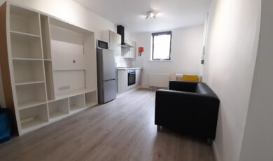 1 Bed Apartment (Large)